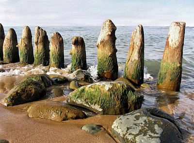 Photograph - The Old Dock Pilings by Kathi Mirto