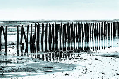 Photograph - The Old Docks by Bryan Carter