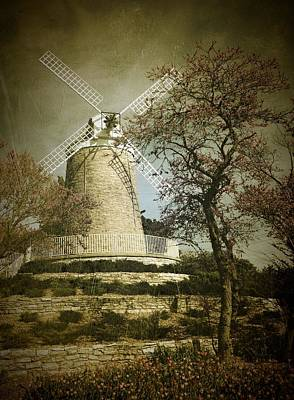 Photograph - The Old Dutch Mill by David Dunham