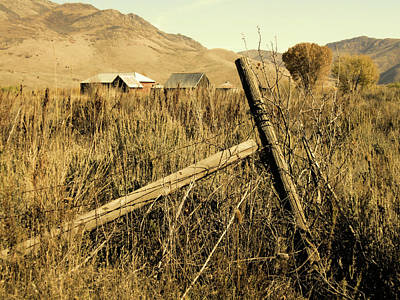 The Old Fence Post Art Print