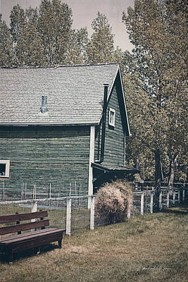 Photograph - The Old Green Barn by Maria Angelica Maira