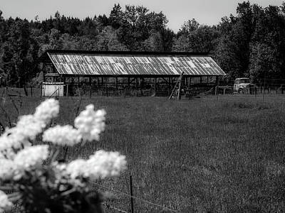 Mosby Photograph - The Old Homestead by Michele James