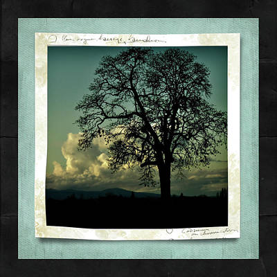 The Old Oak Art Print by Bonnie Bruno