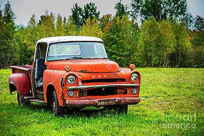Photograph - The Old Orange Dodge by Alana Ranney