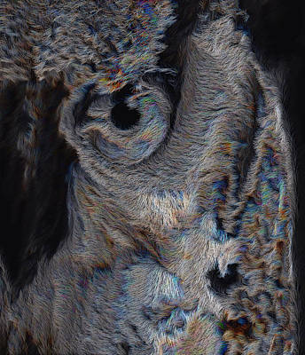 The Old Owl That Watches Art Print