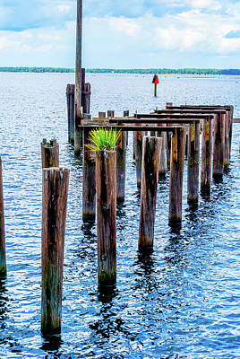 Photograph - The Old Pier by Pamela Williams