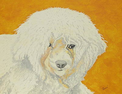 Painting - The Old Poodle by Hilda and Jose Garrancho