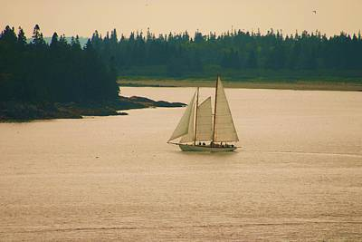 The Old Schooner Art Print by Dennis Curry