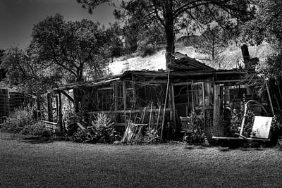 The Old Shed II Art Print by David Patterson