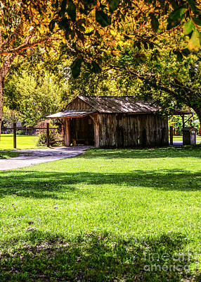 Shed Digital Art - The Old Shed by Shay Childress