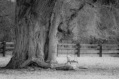 Photograph - The Old Swing by Teresa Wilson