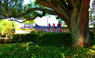 Painting - The Old Tree In The Park by CHAZ Daugherty