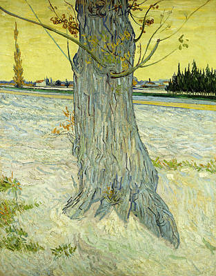 The Old Tree Art Print by Vincent Van Gogh