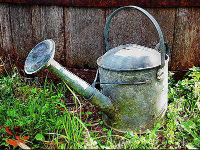 Photograph - The Old Watering Can by Dorothy Berry-Lound