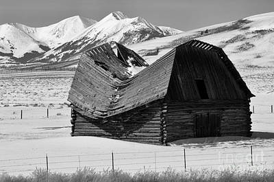 Photograph - The Old Weathered Look by Bob Christopher