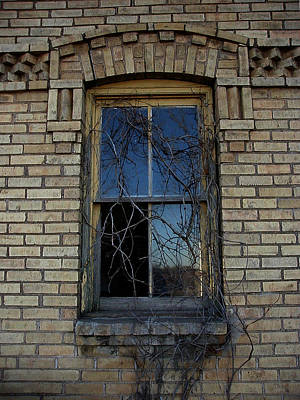 The Old Window Art Print by Laurie With