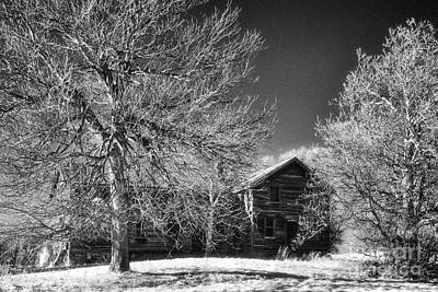 The Old Wood House Art Print by Jeff Holbrook