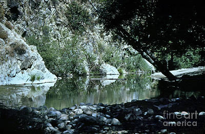 Photograph - The Ole Swimming Hole On The Carmel River Just Below The Bucket 1955 by California Views Mr Pat Hathaway Archives
