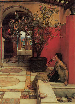 Oleanders Painting - The Oleander by Sir Lawrence Alma-Tadema