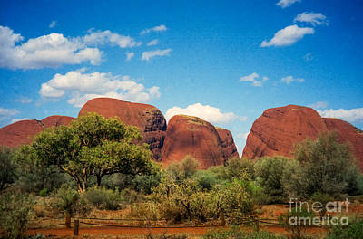 Photograph - The Olgas by Suzanne Luft