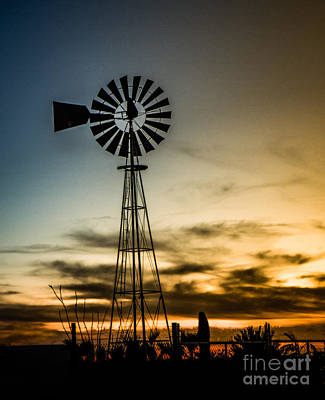 The Old Windmill Print by Robert Bales
