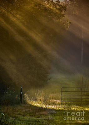 Photograph - The Open Pasture Gate by Amy Porter