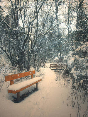 Photograph - The Orange Bench by Tara Turner