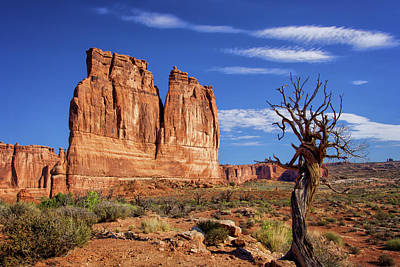 Photograph - The Organ In Arches National Park by Carolyn Derstine