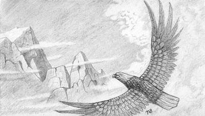 Black And White Eagle Drawing - The Original Eagle by Nils Beasley