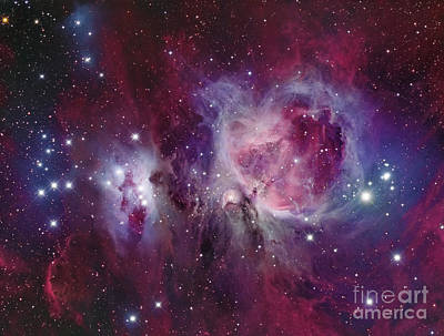 Beastie Boys - The Orion Nebula With Reflection Nebula by Roberto Colombari