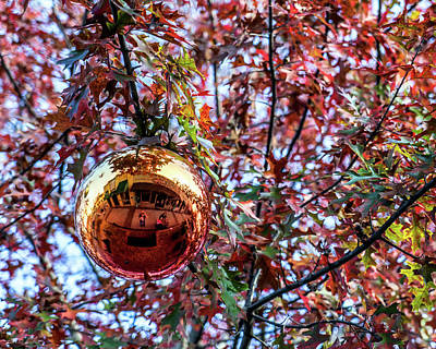 Photograph - The Ornament by Daryl Clark