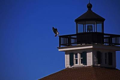 Photograph - The Osprey And The Lighthouse II by Michiale Schneider