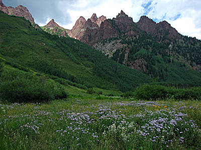 Photograph - The Other Side Of Maroon Bells 1 by Diana Douglass
