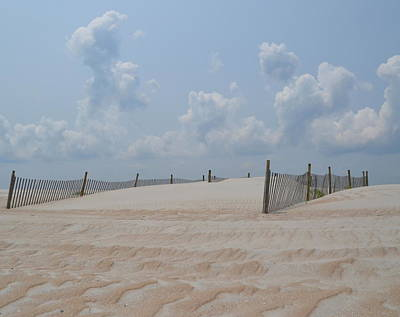 Photograph - Lifes A Beach by Sue McGlothlin