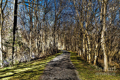 Photograph - The Outlet Trail by William Norton