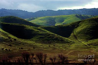 Photograph - The Outskirts Of San Luis Reservoir, California by Polly Peacock