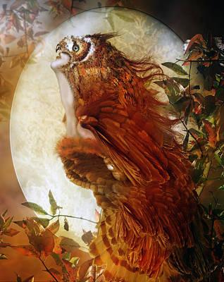 Hoots Digital Art - The Owl by Karen Koski