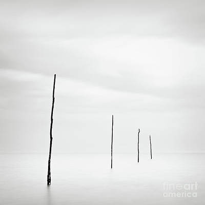 Wall Art - Photograph - The Oyster Beds by Maggy Morrissey