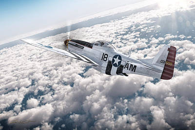 Digital Art - The P-51 Mustang by David Collins
