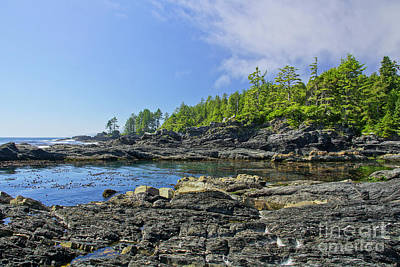 Juan De Fuca Provincial Park Photograph - The Pacific Northwest by Brian Kamprath