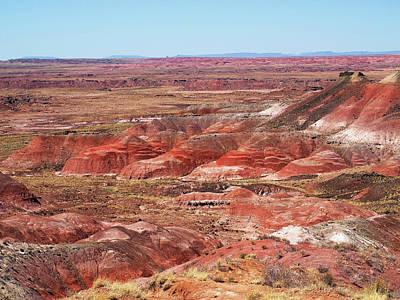 Photograph - The Painted Desert by Mary Capriole