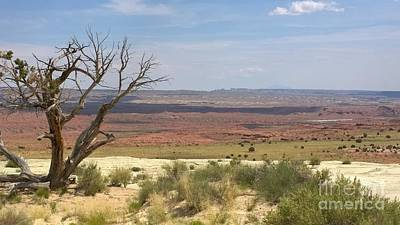 Photograph - The Painted Desert Of Utah 1 by Jennifer E Doll