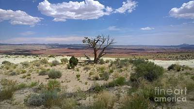 Photograph - The Painted Desert Of Utah 2 by Jennifer E Doll