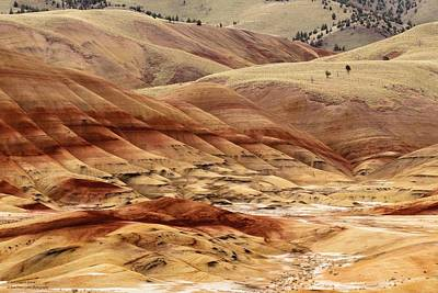 Photograph - The Painted Hills Of Oregon - 1 by Hany J