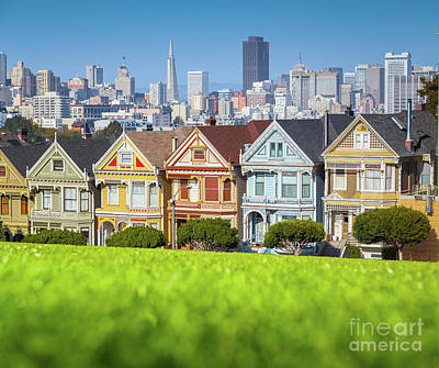Photograph - The Painted Ladies by JR Photography