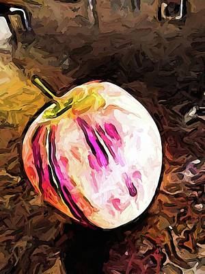 Digital Art - The Pale Pink Apple With The Hot Pink Stripes by Jackie VanO