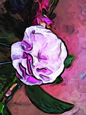 Digital Art - The Pale Pink Flower With The Dark Green Leaf by Jackie VanO