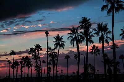 Photograph - The Palms by Ralph Vazquez