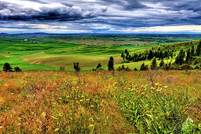 Photograph - The Palouse Hills From Kamiak by David Patterson