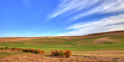 Photograph - The Palouse Hills In September by David Patterson